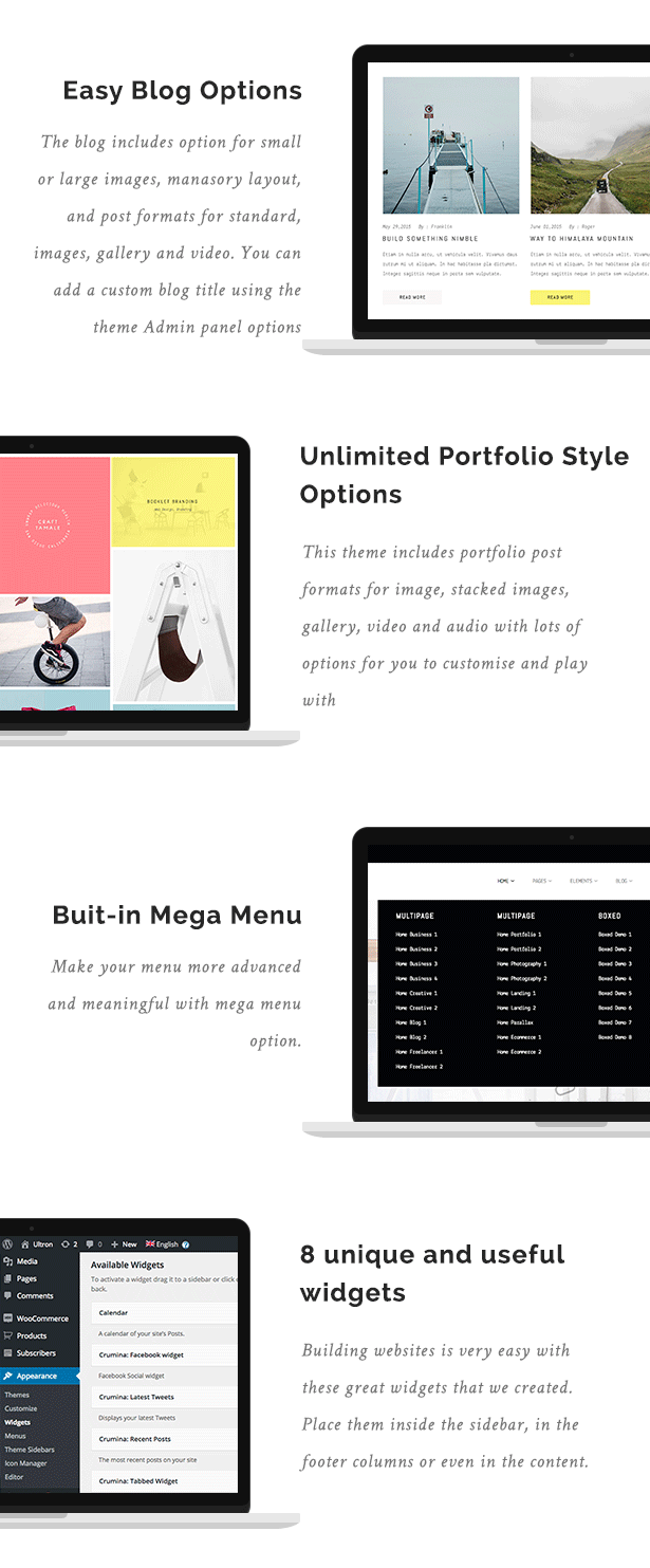 Easy Blog Options, Ultimites Portfolio Style Options, But-in Mega Menu, 8 Unique and Useful Widgets