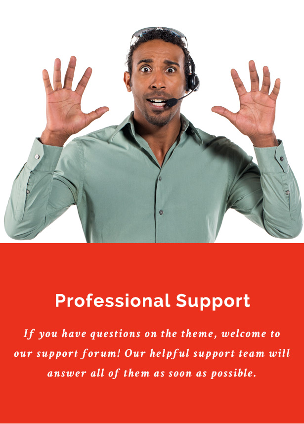 Professional Support